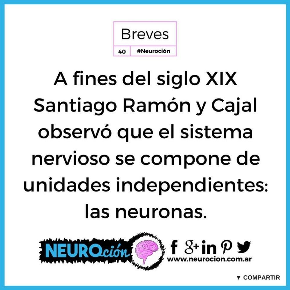 Informaciones breves - Neuroción - Fabri Velázquez