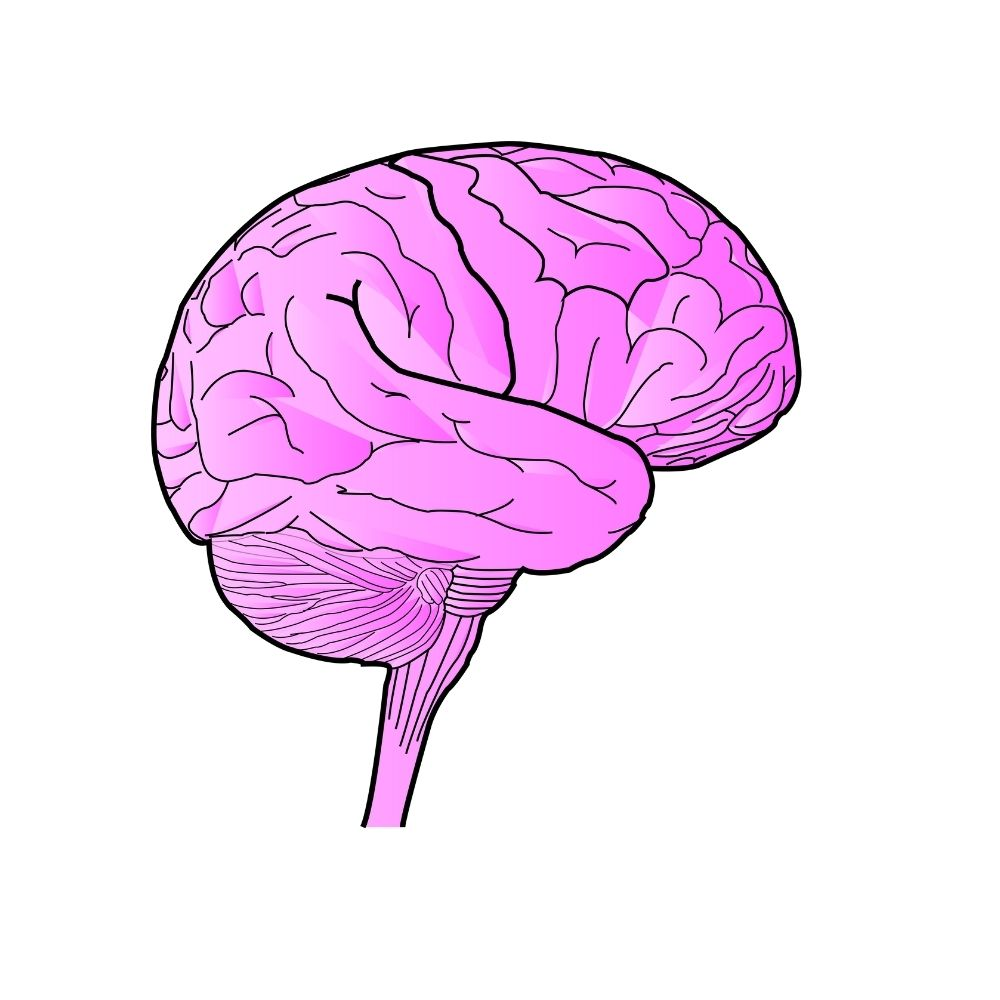 Pruebas de isotipos para Neuroción - Fabri Velázquez
